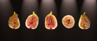 Green fig © Raphael Sloane 2009