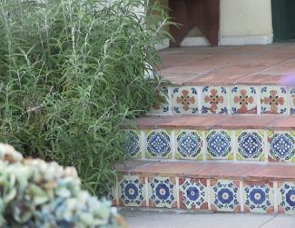 tiled-stair-risers-reynier_IMG_0041