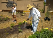 Erin and Saran tend garden