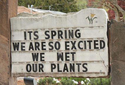 """It's Spring!"""