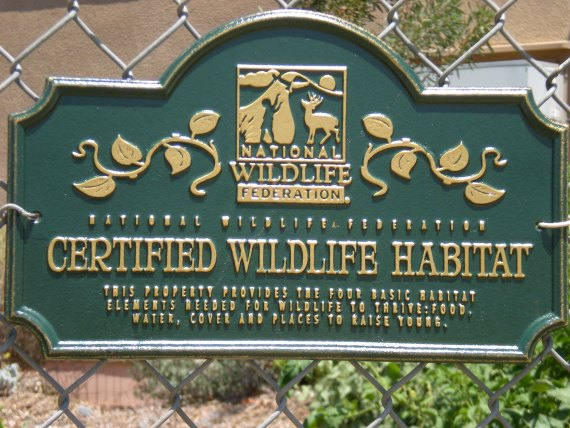 Wildlife Habitat #2s