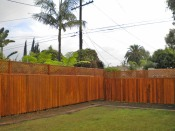 fence painted2s